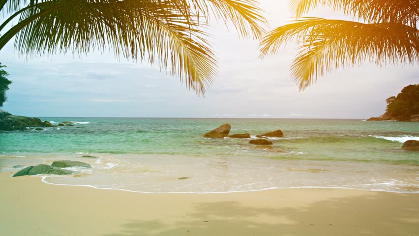 Video 3840x2160 UHD - A sunny tropical beach with palm leaves on the sky background
