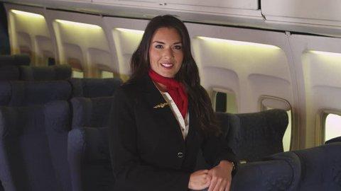Portrait of female flight attendant