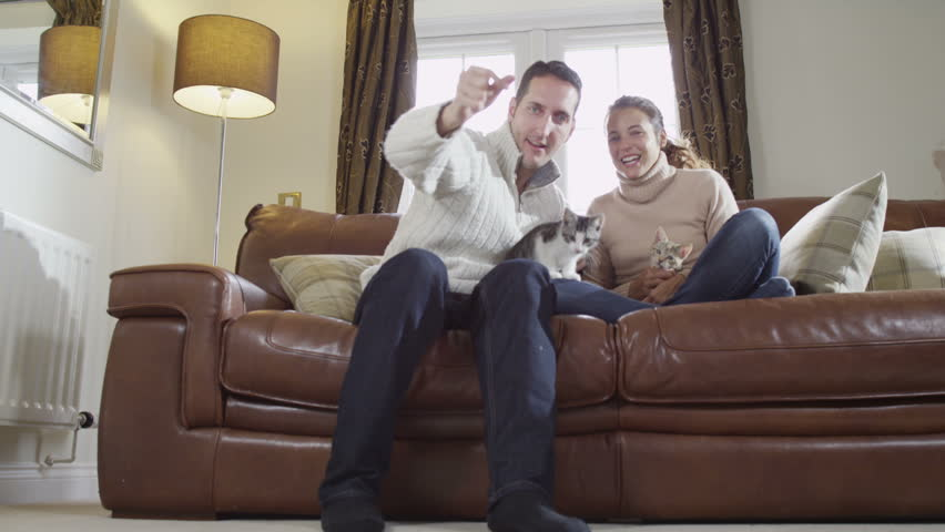 Young couple at home relaxing with their pet kittens. Two cats playing around man and woman.