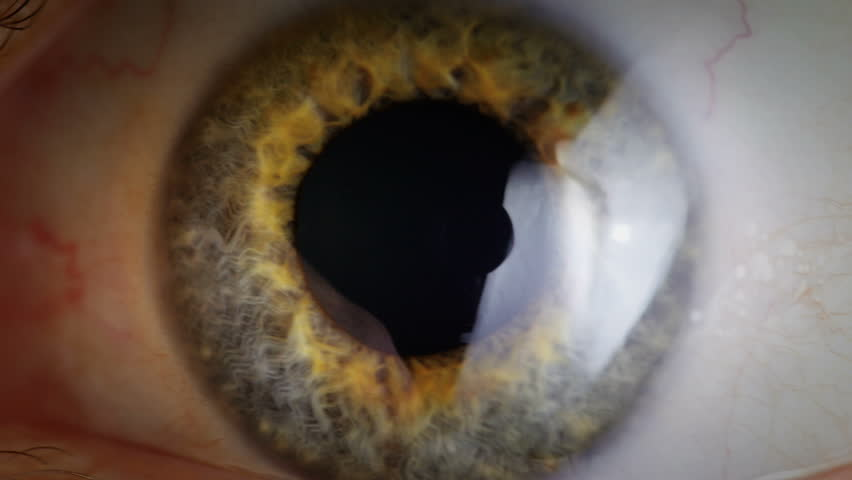 Extreme close up human eye iris in 4K UHD video. Human eye iris contracting. Extreme close up. 4K UHD 2160p footage.