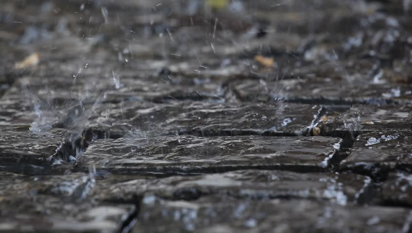 Water Dripping On The Pavement.Close-up. Autumn. Stock Footage Video ...