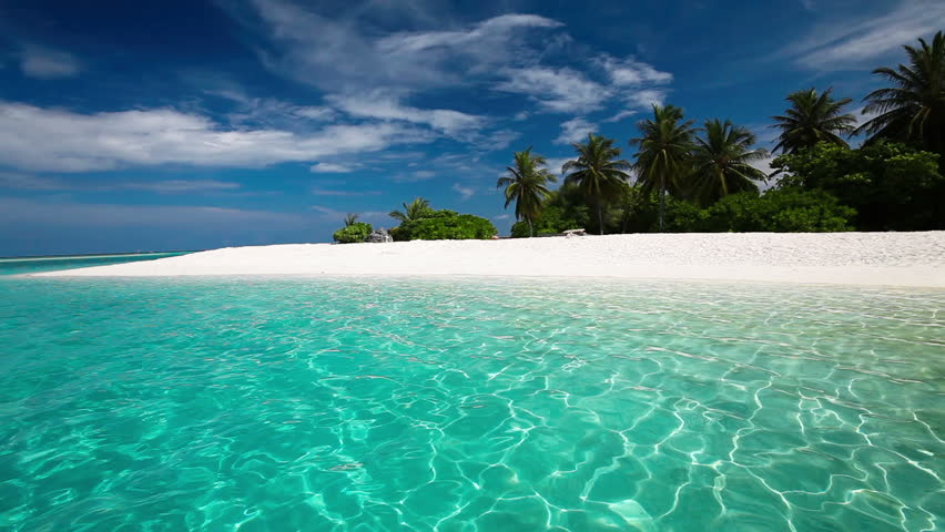 Palm trees over tropical lagoon with white beach in Maldives