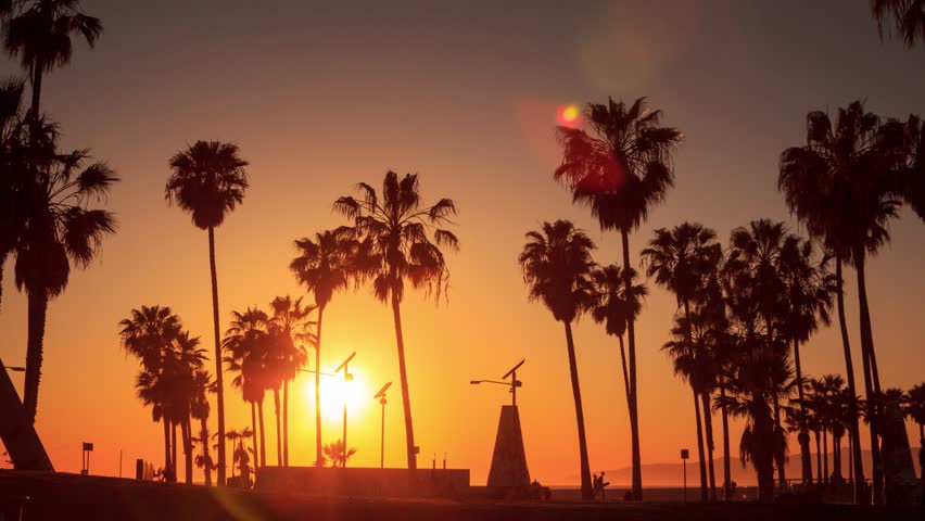 Silhouettes of palm trees against sunset at Venice Beach, California. Timelapse in motion (hyperlapse). | Shutterstock HD Video #9343391