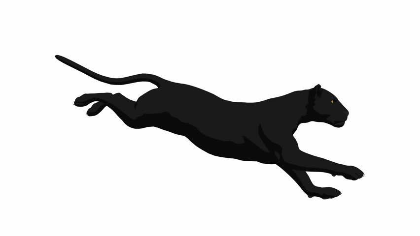 jump of wild black panther in time warp stock footage cougar clip art free cougar clip art templates