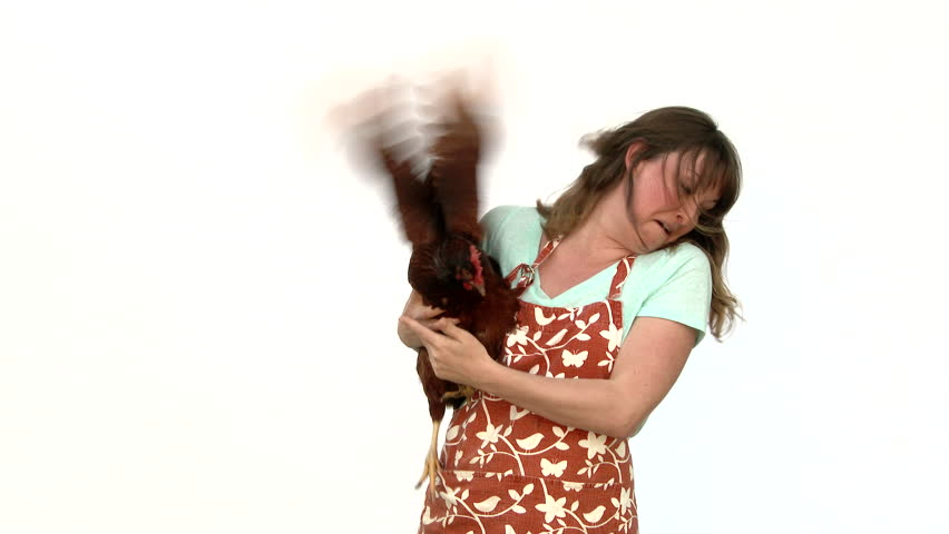 Model released woman holding her camera shy chicken in studio.
