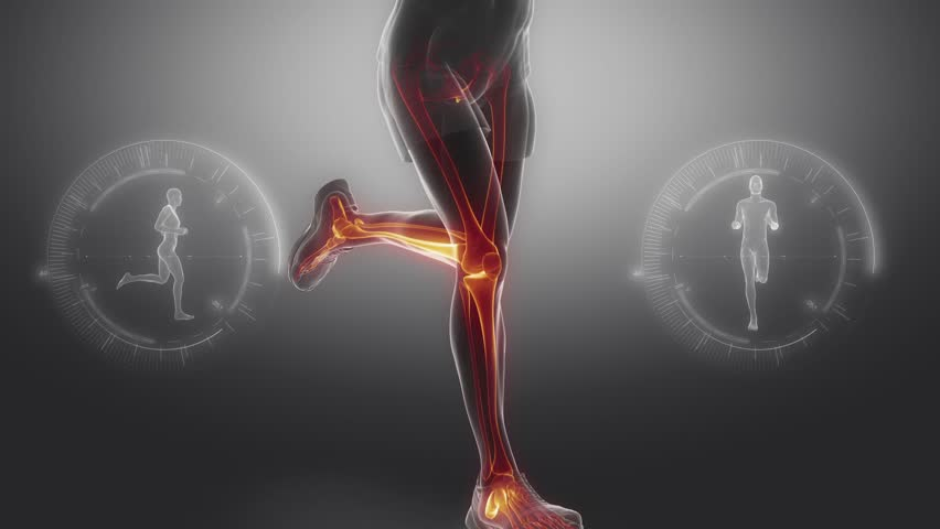 Running man leg bones and joints scan