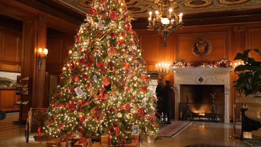30 christmas tree