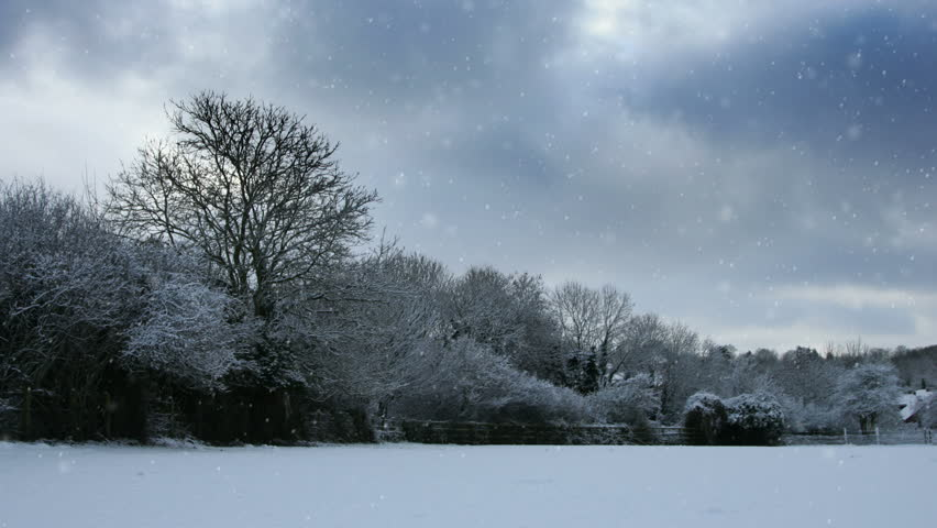 time lapse of winter scene with snow falling, Hampshire UK