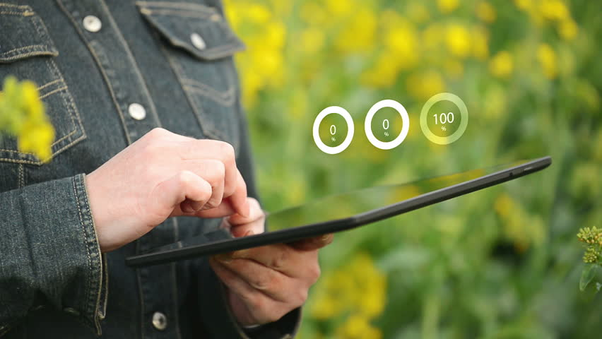 Female Farmer using Digital Tablet Computer with Animated Infographic Charts in Oilseed Rapeseed Cultivated Agricultural Field Examining and Controlling The Growth of Plants
